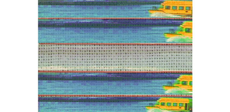 <em>Yellow Water Taxi</em>