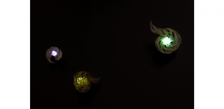 <em>Nebulae-A</em>